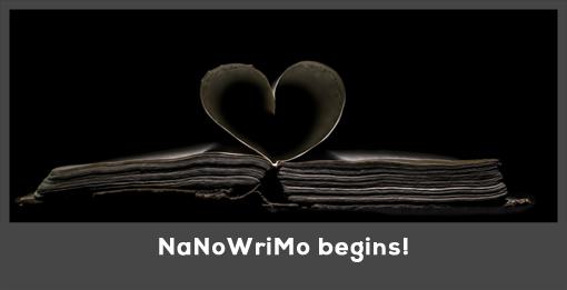 nanowrimo copy